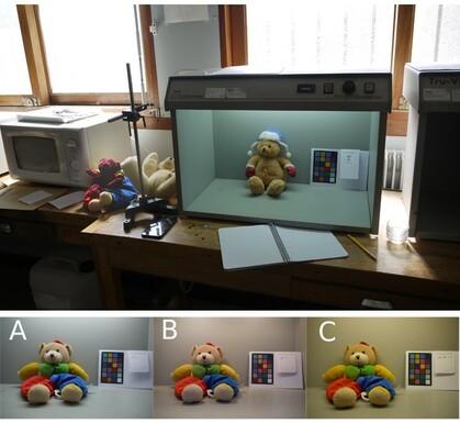 lesnounourssouslefeudesprojecteurs_visuel3_article5.jpg